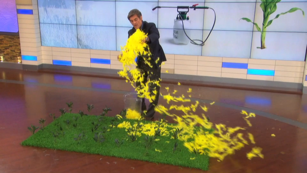 Dr. Oz blowing feathers all over the stage.