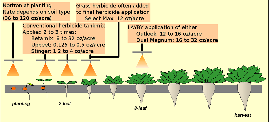 Conventional Beet Herbicide Figure