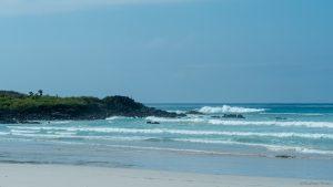 One of the wonderful beaches on Santa Cruz